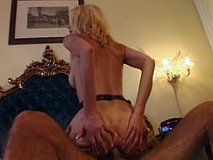 Beautiful blonde chick Nikki 9 wearing stockings is trying hard to please a black stud. She gives him a terrific blowjob and then enjoys doggy style anal sex.