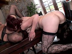 Press play to watch these glamorous cougars, with nice asses wearing sexy lingerie and stockings, while they lick each other fervently.