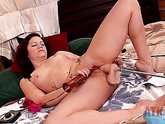 Brunette Brandi Belle with small breasts and hairless snatch strips down to her bare skin