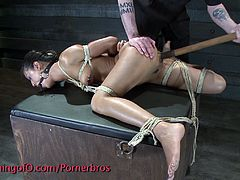 Check out this horny innocent brunette turned into a nasty BDSM bitch. She is all tied up and toyed in her holes till a deep orgasm!