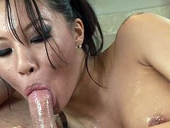 Things are quite amazing as staggering Asian milf, Asa Akira, blows cock like a true goddess