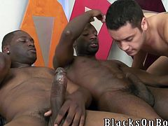 Horny Latino twink is getting naughty with two black homosexuals. The Latino shows his blowjob skills to the guys and gets his ass drilled doggy style.