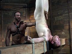 Check out this hot hunk humiliated and bonded! He got his big stiff cock jerked off by a muscled hunk for a nice cumshot!
