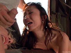 Enjoy watching some amazing bondage sex scenes. A slutty blonde and a hot Asian girl are tied up strongly with ropes to the wooden bar in an uncomfortable position. They are the prisoners of a harsh guardian who fingers their asses whenever he wants. See the blonde bitch being fucked hard from behind and sucking dick