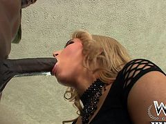 Check out this hot interracial action. Aleska needs to put her lips on a massive black cock. She gets down on her knees and tries to fit as much of the big black dick in her mouth as she can. Her pussy is wet now, so she wants the giant black pecker in her vagina.
