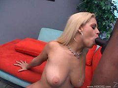 Stunning blonde with big natural boobs sucks fat BBC and gets her soaking cunny screwed from behind. Then she does anal riding that dick in a reverse cowgirl pose until man cums on her face.