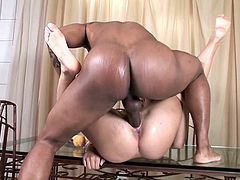 Salacious blonde Kim Nicole is having a great time with a black stud in a stunning interracial sex clip. She licks the dude's BBC and they have sex in the reverse cowgirl and the missionary positions.