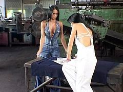 These two babes sneak off into the warehouse where they work, strip down and used their toys to get each other off on the jobs.