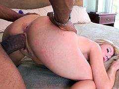 Sexy Sindee Jennings takes a huge cock doggystyle in a sexy interracial fuck after giving the guy an amazingly hot blowjob.
