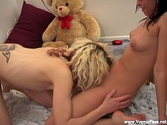Blonde bitch and her brunette female friend agreed for FFM threesome