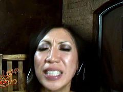 Hot tempered Asian hoochie hops on big cock like sex insane. Her pussy swallows big shaft cowgirl style and her big fake tits bounce like crazy balls.