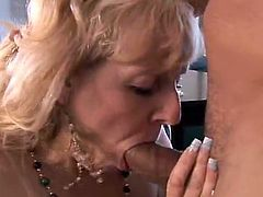 Females who have got laid huge lick phallus and eat sperm