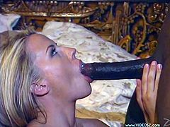 Cute blonde babe enjoys sucking a big juicy black cock and takes it up her little wet pussy in a hardcore doggystyle fuck.