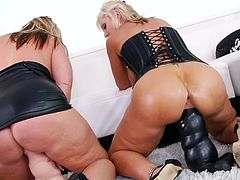 There's nothing to please these curvy sluts more than pounding their wet ass hole with huge toy dongs