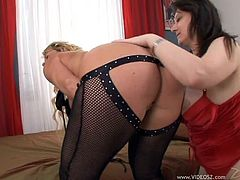 Asstastic blonde skank wearing black lace stockings spreads her legs getting her trench eaten by brunette lady. Thereafter dark-haired slut sits on blondie's face to get cunnilingus.
