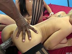 Slutty and voracious dark haired and light haired bitches get drilled doggystyle in turn on the bed by the black guy. Have a look at these chicks in My XXX Pass sex video.