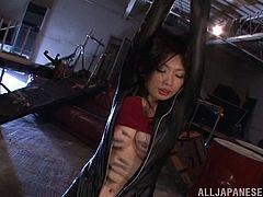Asian hottie Hikari Hino gets tied up and teased with toys. She had her hairy pussy fucked up hardcore with a vibrator in a messy bondage.
