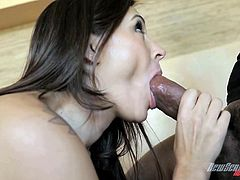Make sure you have a look at this hardcore interracial scene where the beautiful milf Raylene is fucked silly by a big black cock while her cuckold man watches.
