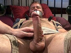 Drake is a hot male with a big hard cock which his executor wants to take full advantage of it. He tied up Drake nice and tight and now he plays with that big piece of meat, teasing him and making him wanna cum a lot. After he rubbed the tip of his penis with vibrators and taunted him, he now finally has a taste!