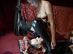 BDSM loving bisexual chicks in leather and fishnet enjoy femdom session and gets pussy licked and banged after finger fucking