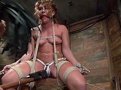 Here we have a dirty little cunt named Savannah Fox. The foxy lady had it coming and because she liked to spread those thighs to often it was time to gave her a lesson hard to forget, or forgive. Our executor took her in his hands, tied and hanged her with her legs spread and dildo fucked the bitch hard & deep.