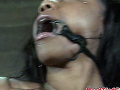 Hogtied ebony bdsm submissive tormented by black dominator