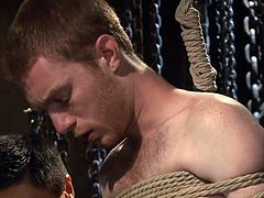 If you are curious to see Seamus enduring half an hour of crazy torment, dare to click! The kinky scenario introduces you in the dark basement where the hot stud is kept tied in a strong rope bondage. Seamus obeys to his master's order to suck his dick. Watch him getting whipped with no mercy.