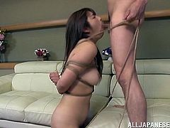 The hot stud likes to play with an Asian pussy in BDSM masturbation and gets a little nasty and wild with hardcore banging in bondage.
