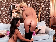 Blonde Eve Angel is on the way to the height of pleasure in solo action