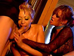 A busty milf and her blonde-haired sexy companion, desire to have fun all night long. The lesbian kinky couple invited a guy, to take part in the game of lust and start playing dirty with his horny cock. Watch them kissing, sucking dick with passion and getting laid with legs widely spread. Enjoy!