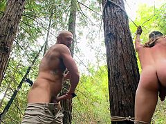 This unlucky slave is blindfolded and tied between two huge trees by his hunky master. The master brutally whips the slave's ass and back. The executor grabs his slave from behind and covers his mouth to stop his moaning. Now the master fucks his slave's tight asshole with his big cock.