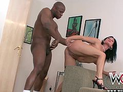 Tory Lane gets assfucked senseless before getting a big cumshot.