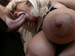 Bridgette B gets cunt licked and fucked in POV after intense blowjob