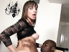 Sean Michaels uses his throbbing pole to make Dana DeArmond happy before she gives mouth job