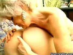 Francesca and Erlene are wild grannies wearing sexy stockings and lingerie and they share a fresh huge cock as they start sucking it sloppily and licking his balls.