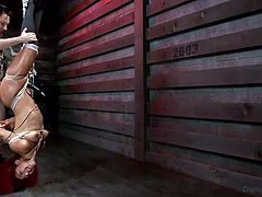 Look at the sexy and sultry Daisy, as she is tightly bound in rope and hanged upside down in the sex dungeon, by her mean master. The master tortures and bites her, before sticking his measly cock inside her cunt. He gets down to the floor and makes her give him a blowjob, to suit his needs and desires.