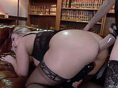 Chanel loves Angel's appetizing buttocks and crazy round ass. The busty lady wearing a strap on, begins to fuck anally, the slutty blonde from behind. The bitches are dressed in black lace sexy lingerie. Angel doesn't lose the chance to use also a vibrator, when banged in the ass. See all the kinky details!