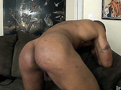 Jodi Taylor fulfills her sexual needs with dudes cock in her mouth
