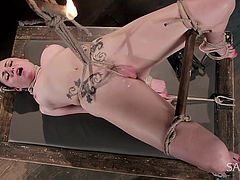 Bdsm activities can be really tough. But Veruca has been a naughty girl and has to be punished. The fierce executor has tied her up in a strong rope bondage and the brunette tattooed bitch cannot escape. The dirty sadic game involves playing with a lit candle wax. Click to enjoy the kinky details!