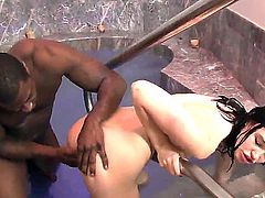 Dark haired chick Jodi Taylor with tiny boobs gets her neatly trimmed pussy licked and fucked by horny black guy in steamy interracial action. Her lovely white pussy tastes delicious!