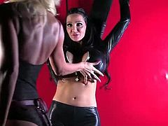 Puma Swede Teaches Bad GIrl Amy Anderssen A Lesson