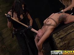 Blonde-haired Mila and busty Lexy, torture a helpless sex slave, who's been long kept down in the basement. The fun begins with bonding the helpless bitch with ropes. The dirty kinky game involves using sex toys, such as strap on and dildos. Click to watch the wild lesbians getting loose! Don't miss the details.