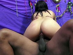 Fascinating cowgirl giving her guy blowjob before yelling while her pussy is being drilled hardcore missionary in interracial group sex