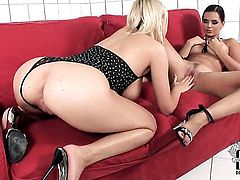 Mandy Dee with gigantic boobs and smooth muff and and enjoy lesbian sex too much to stop
