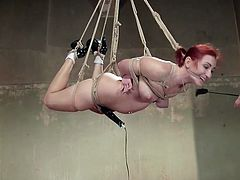 A mouth gagged helpless lady has been tied up severely with inescapable ropes. The tough executor attached a vibrator. You can see close ups of her pussy and buttocks, while whipped with intensity. Click to see Sophia punished and experiencing brutal orgasms. Enjoy the kinky scenario!