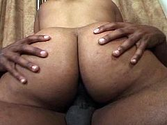 Cute bubble ass babe gets drilled on the couch by a big black cock.