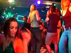 Party tramps get their mouths and cunts fucked by strippers