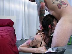 Tattooed maiden in sexy lingerie and stockings getting nailed doggy style in a steamy bed sex