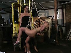 Blonde Mandy Bright with giant breasts wants Bianka Lovely to lick her snatch forever