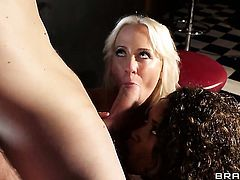 Carla Cox has anal fun with hard cocked bang buddy Danny D